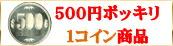 500円ポッキリ!