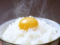 天来烏骨鶏卵(タマゴ)