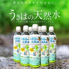 うきはの天然水500㎖/2箱(48本入り)