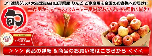 2020 山形県産 リンゴ