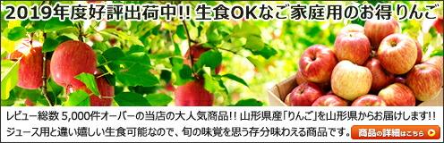 山形県産 りんご ご家庭用