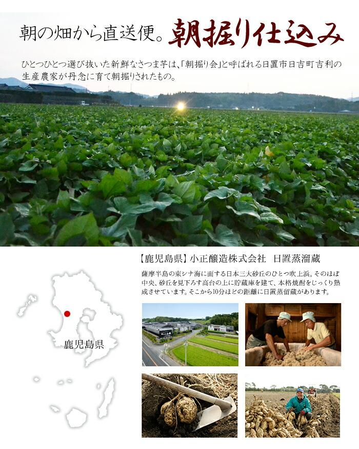 本格芋焼酎、緑の地球