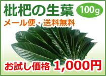 びわの生葉100g