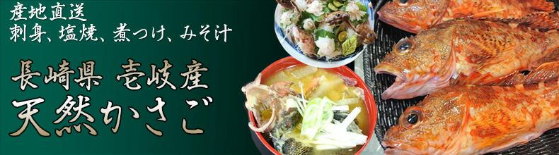 鮮魚 壱岐産かさご