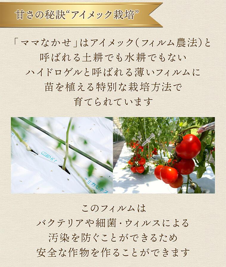 04 アイメック農法でつくられた特殊なトマト