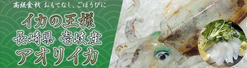 壱岐産アオリイカ 500g