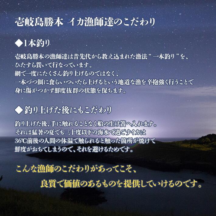 壱岐島勝本の漁師達は網で一度にたくさん釣り上げるのではなく、一本づつ餌に食らいついたら上げるという地道な漁を辛抱強く行うことで身に傷がつかず鮮度抜群の状態を保ちます。
