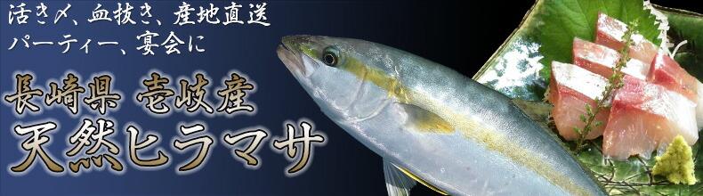 ヒラマサはブリ御三家(ブリ・カンパチ)と呼ばれている青背魚の中でも最高級とされています。下処理代無料!