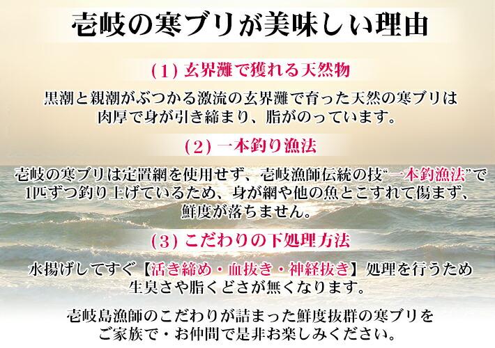壱岐産 天然寒ブリはとてもおいしい