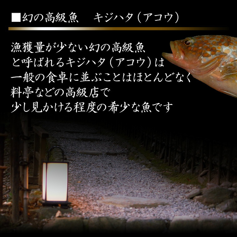 1 希少な高級魚 きじはた 関西ではアコウ 長崎・福岡ではアカアラ