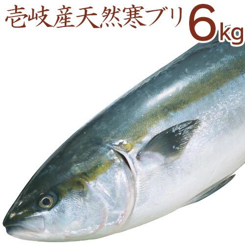 ブリ6kg