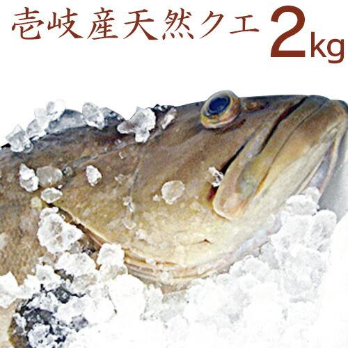 【H】クエ2k