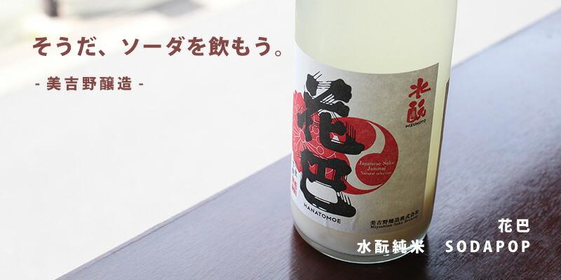 花巴 水もと純米 SODAPOP