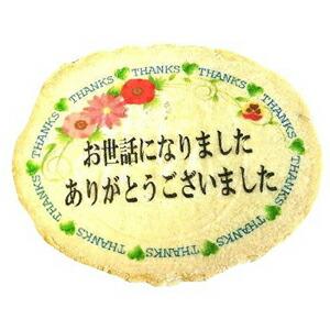 サンキューせんべい小判ピロ個装