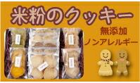 ノンアレルギー無添加米粉のクッキー