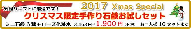 Xmasお試しセット12/1~12/26