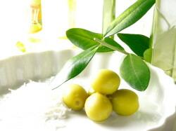 人の皮脂に近い成分オレイン酸や保湿成分スクワレンを多く含むオリーブオイル