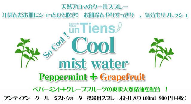 【期間限定】無添加化粧水 ペパーミント+グレープフルーツの爽快ミストウォーター「クール」100ml携帯用スプレーボトル入り