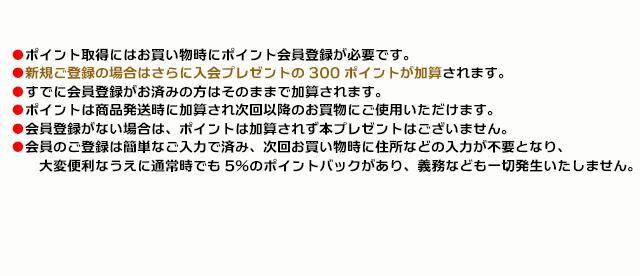 手作り石鹸アンティアン1805キャンペーンcopy3