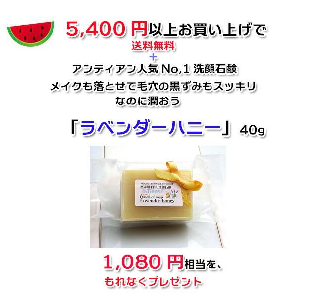 手作り石鹸アンティアン1807キャンペーンcopy