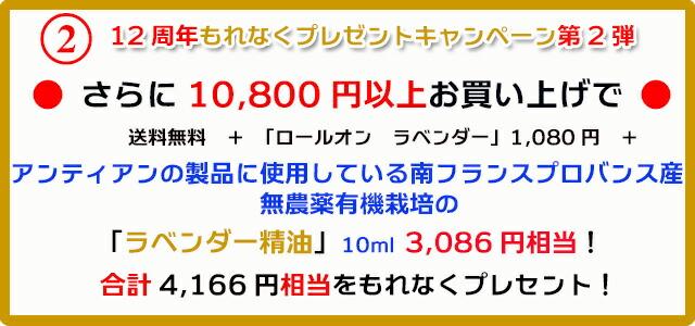 手作り石鹸アンティアン1810今月のキャンペーンcopy2