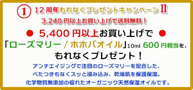 手作り石鹸アンティアン1811キャンペーン1