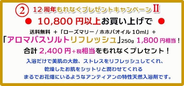 手作り石鹸アンティアン1811キャンペーン2