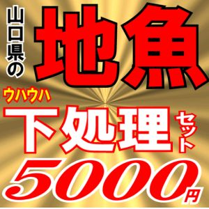5000下処理