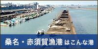 桑名・赤須賀漁港はこんな港