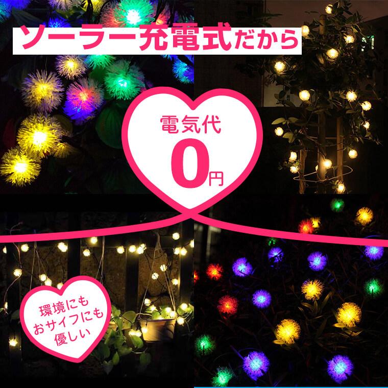 電気代0円