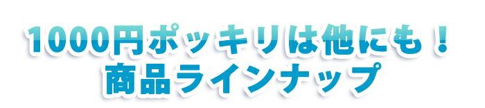 1000円ポッキリの商品は他にも!