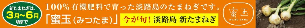 蜜玉(みつたま)迫田 瞬(さこだしゅん)の100%有機肥料で特別栽培の淡路島たまねぎ