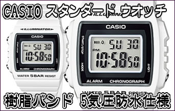 CASIO 2015 WATCH