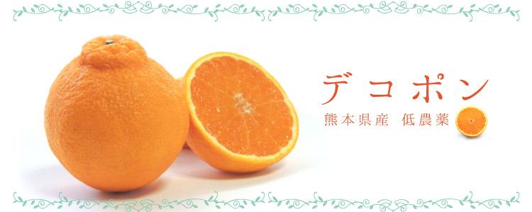 デコポン 無農薬 野菜 自然食品 東京