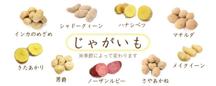 じゃがいも 無農薬 野菜 自然食品 東京
