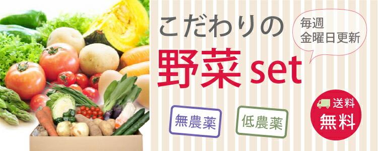 野菜セット 無農薬 野菜 自然食品 東京