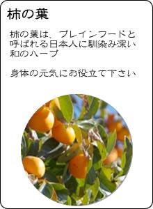 ヴィーナース|国産柿の葉茶
