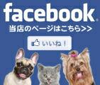 ベッツジャパンFacebookページ