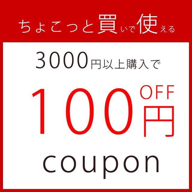 3000円以上購入で100円オフクーポン