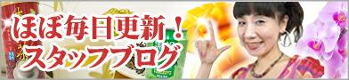 台湾小集スタッフブログ