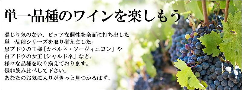 単一品種のワインセット