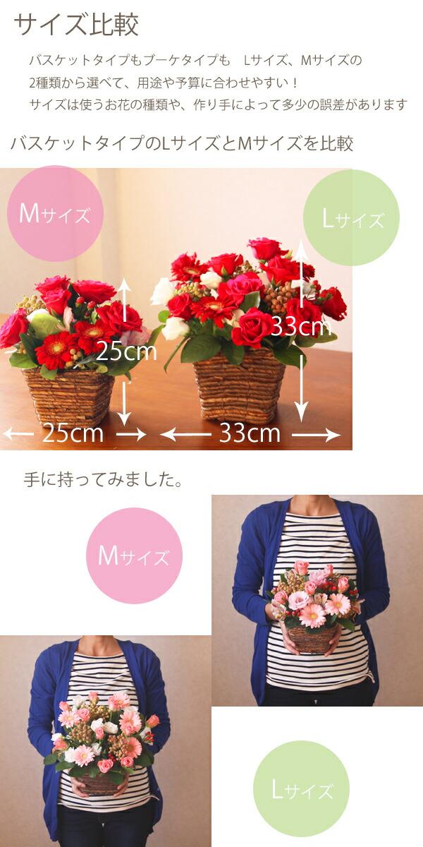 rosek_size.jpg