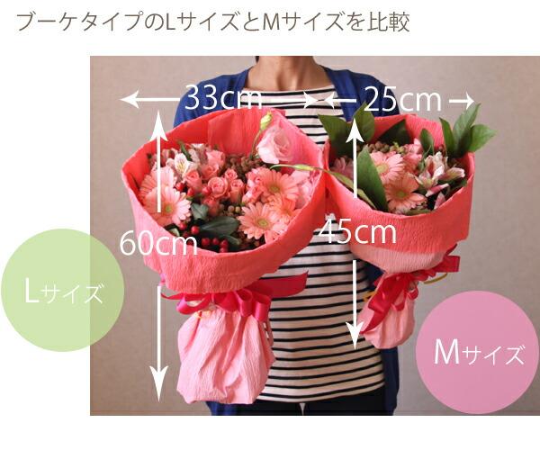 rosek_size2.jpg