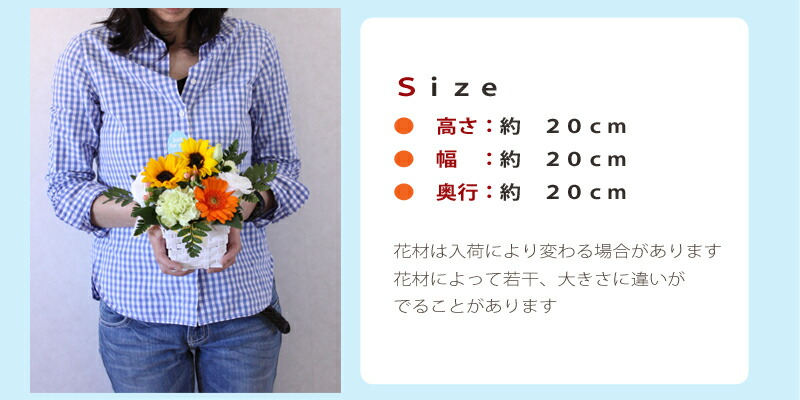 sum_ar_cute_size.jpg