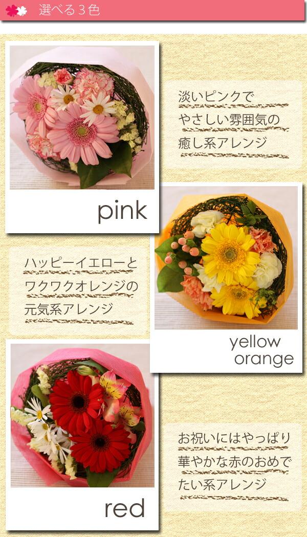 bq_petite_color.jpg