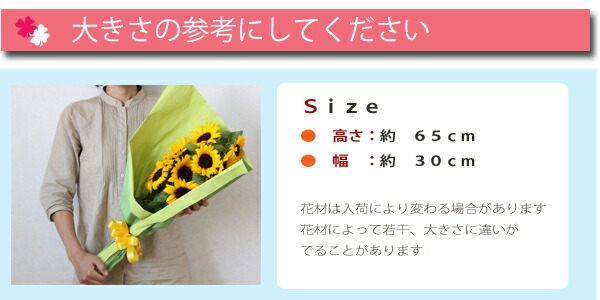 bq_sunflower_size.jpg