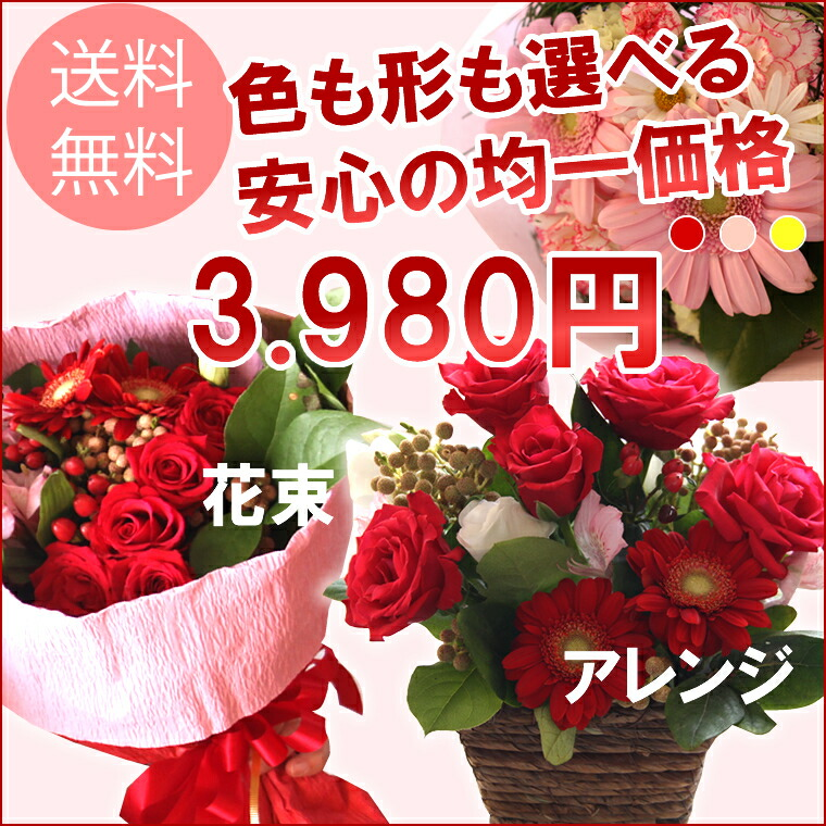 ギフト 送料無料 均一価格 3980円 2014