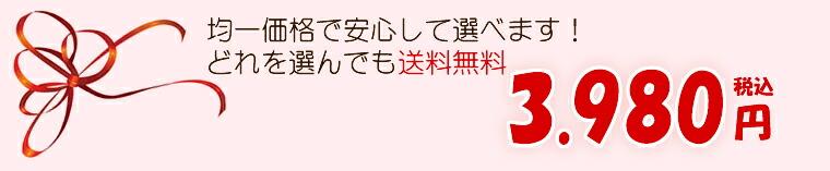 母の日 ギフト 送料無料 均一価格 3980円 2014