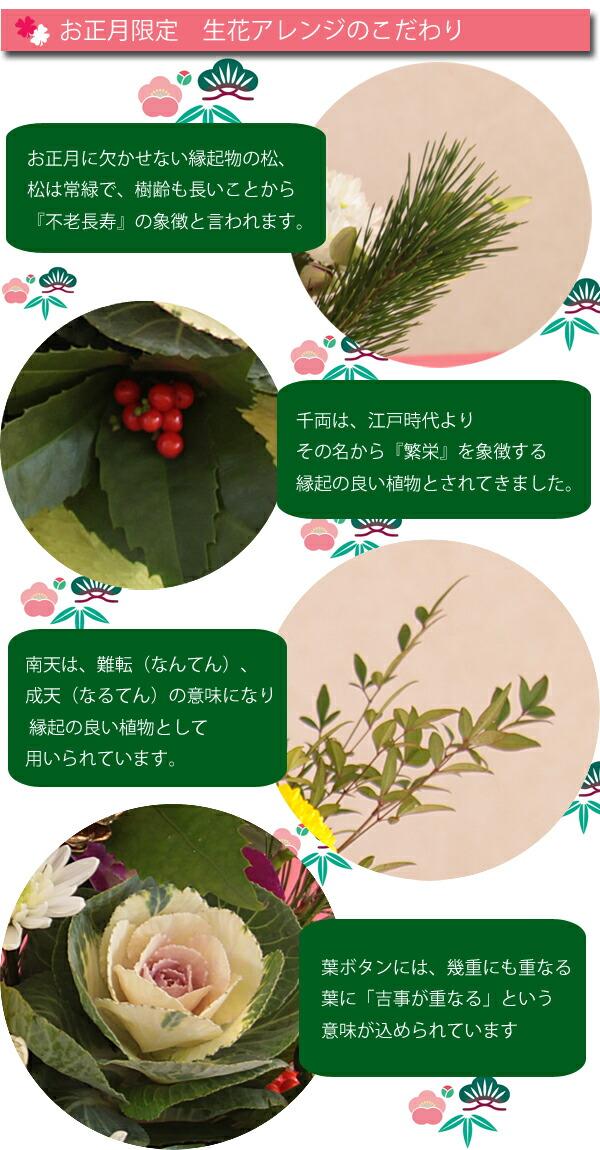 nw_ar_l_kodawari.jpg