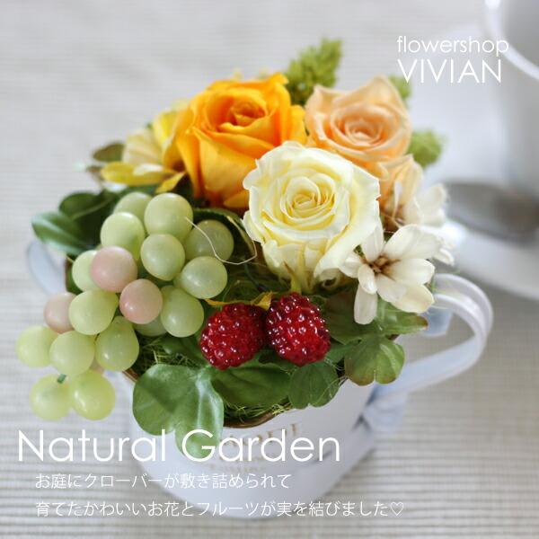 naturalgarden_main.jpg